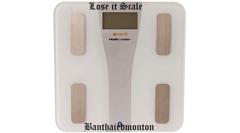 Lose it Scale