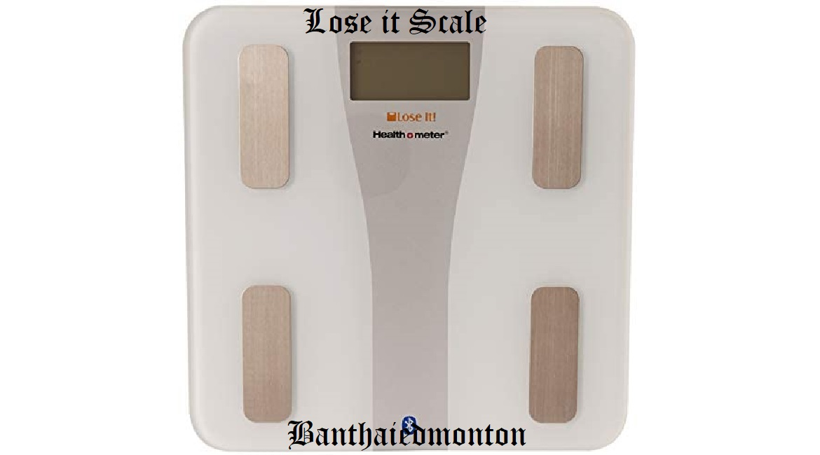 Lose it Scale