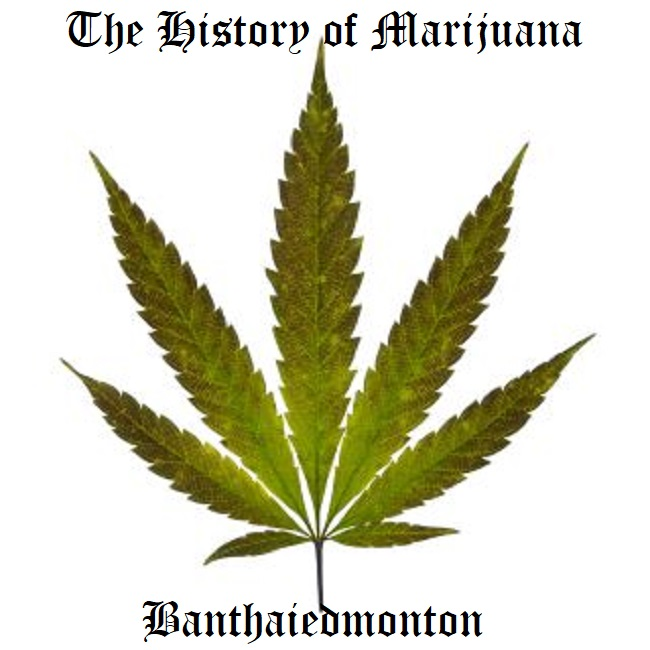 The History of Marijuana