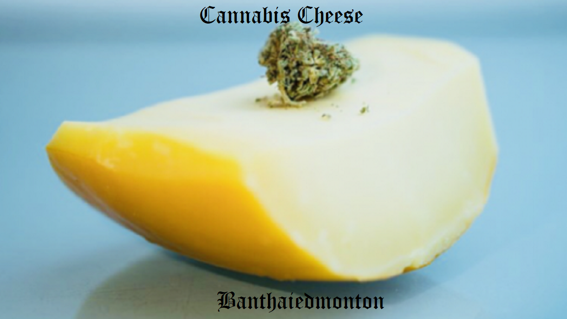 Weed Cheese