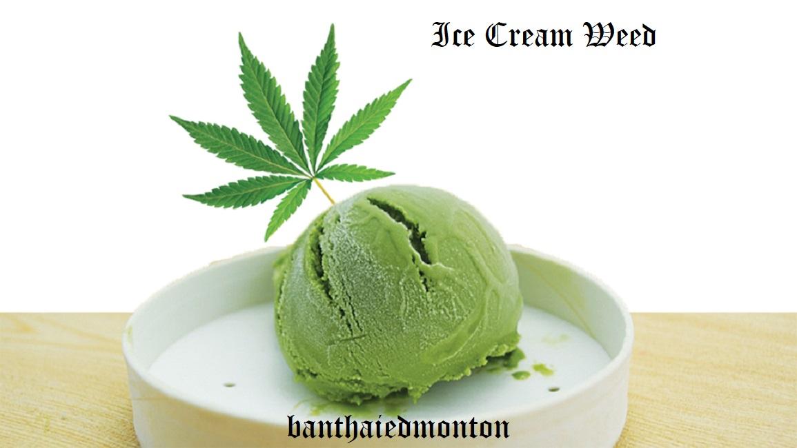 ice cream weed