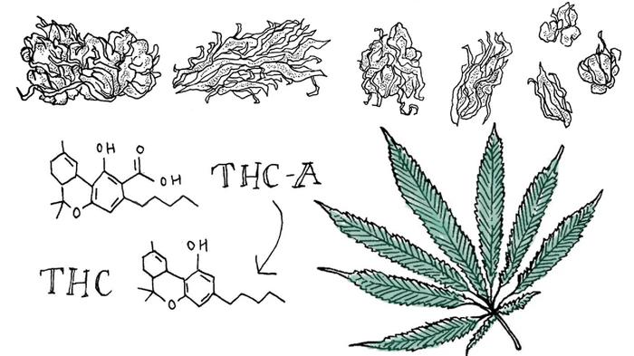 Original Weed Recipes