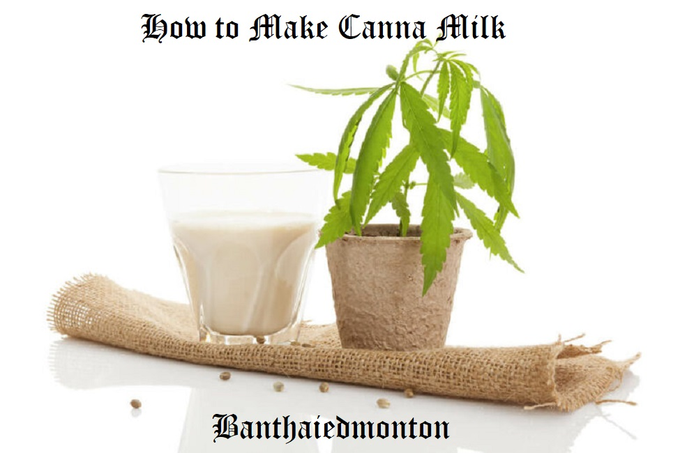 How to Make Canna Milk