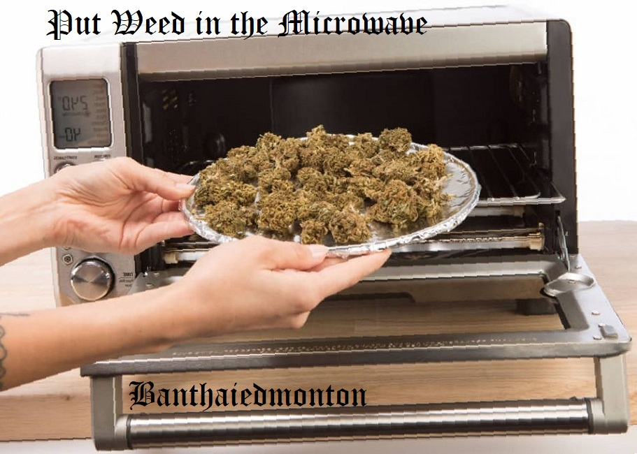 What Happens When You Put Weed in the Microwave