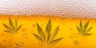 How to Make Weed Beer